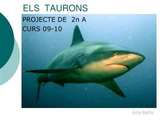ELS  TAURONS