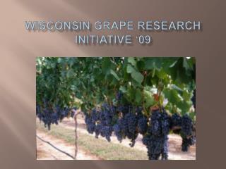 Wisconsin Grape Research Initiative  09