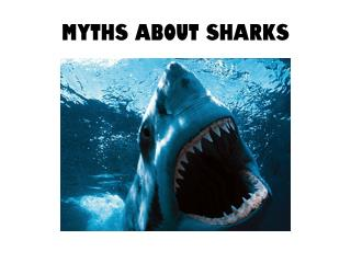 Myths about Sharks