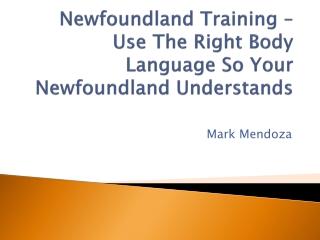 Newfoundland Training