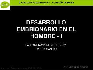 DESARROLLO EMBRIONARIO EN EL HOMBRE - I