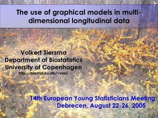 The use of graphical models in multi-dimensional longitudinal ...