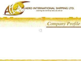 Company Profile An Overview of