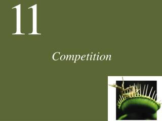 Competition - Ecology