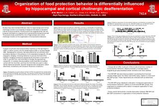 Organization of food protection behavior is differentially influenced  by hippocampal and cortical cholinergic deafferen