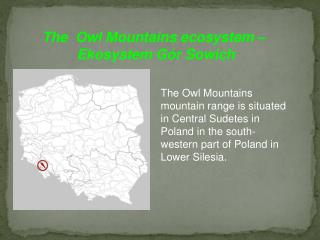 The Owl Mountains mountain range is situated in Central Sudetes in Poland in the south-western part of Poland in Lower S