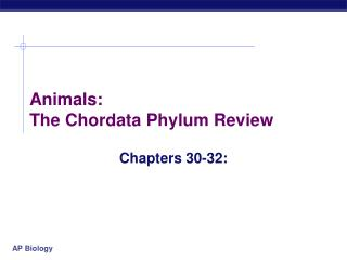 Animals:  The Chordata Phylum Review