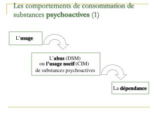 Les comportements de consommation de substances psychoactives 1