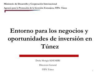 Ministerio de Desarrollo y Cooperaci n Internacional  Agencia para la Promoci n de la Inversi n Extranjera, FIPA- T nez