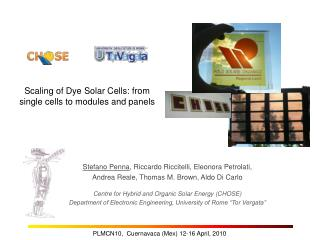 Scaling of Dye Solar Cells: from single cells to modules and panels