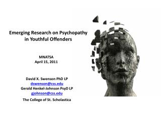Emerging Research on Psychopathy in Youthful Offenders