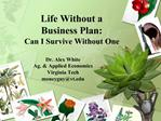 Life Without a  Business Plan: Can I Survive Without One