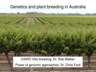 Genetics and plant breeding in Australia