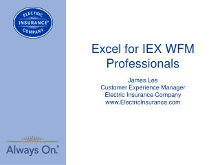 Excel for IEX WFM Professionals