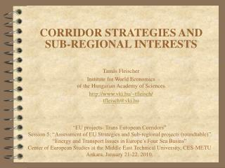 CORRIDOR STRATEGIES AND SUB-REGIONAL INTERESTS