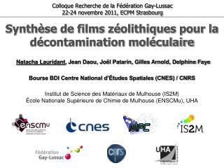 Synth se de films z olithiques pour la d contamination mol culaire