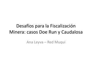 Desaf os para la Fiscalizaci n Minera: casos Doe Run y Caudalosa