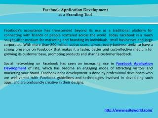 Facebook Application Development as a Branding Tool