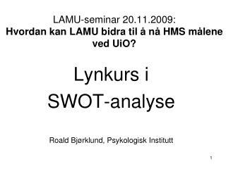 LAMU-seminar 20.11.2009:  Hvordan kan LAMU bidra til   n  HMS m lene ved UiO