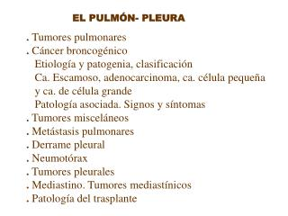 EL PULM N- PLEURA