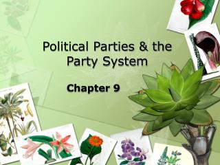 Political Parties  the Party System