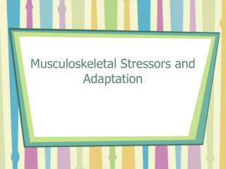 Musculoskeletal Stressors and Adaptation