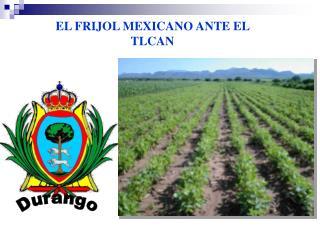 EL FRIJOL MEXICANO ANTE EL TLCAN
