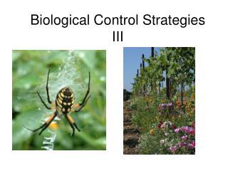 Biological Control Strategies III