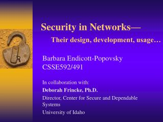 Security in Networks      Their design, development, usage