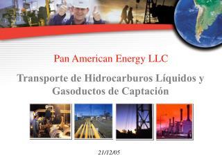 Pan American Energy LLC