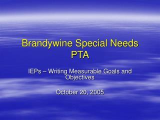 Brandywine Special Needs PTA