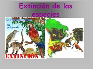 Extinci n de las especies
