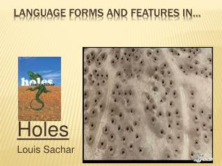 Language forms and features in