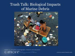 Trash Talk: Biological Impacts of Marine Debris