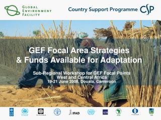 GEF Focal Area Strategies   Funds Available for Adaptation