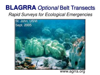 BLAGRRA Optional Belt Transects   Rapid Surveys for Ecological Emergencies