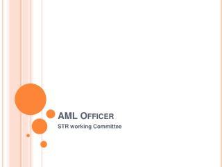 AML Officer