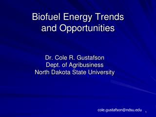 Biofuel Energy Trends and Opportunities