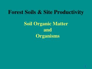 Forest Soils  Site Productivity