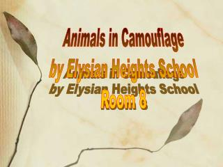 Animals in Camouflage by Elysian Heights School Room 8