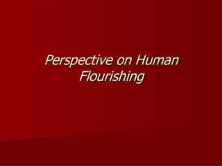Perspective on Human Flourishing