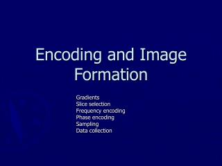 Encoding and Image Formation