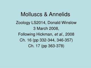 Molluscs  Annelids