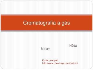 Cromatografia a g s
