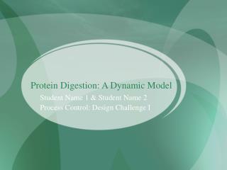 Protein Digestion: A Dynamic Model