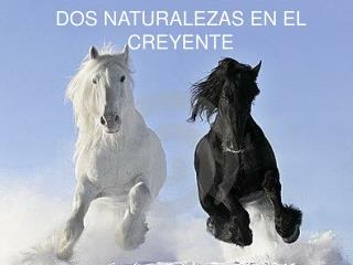 DOS NATURALEZAS EN EL CREYENTE