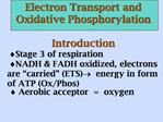 Electron Transport and Oxidative Phosphorylation   Introduction  Stage 3 of respiration NADH  FADH oxidized, electrons a
