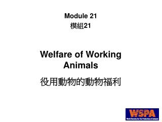 Welfare of Working Animals