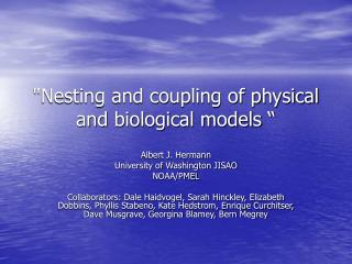 Nesting and coupling of physical and biological models