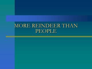 MORE REINDEER THAN PEOPLE